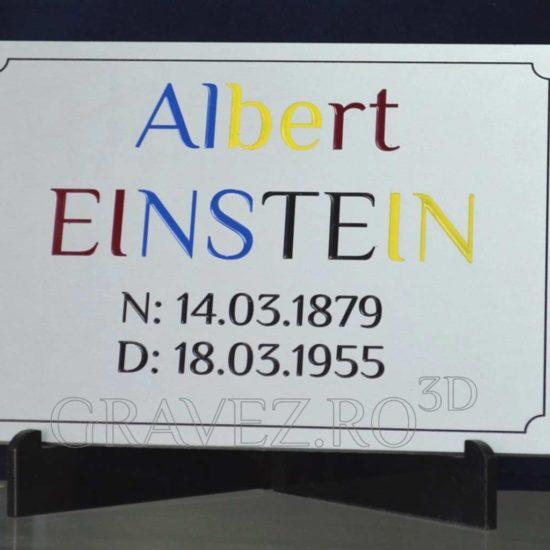 Placa comemorativa de aluminiu gravata cu freza